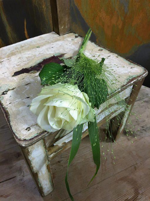 Vit ros med fontängräs